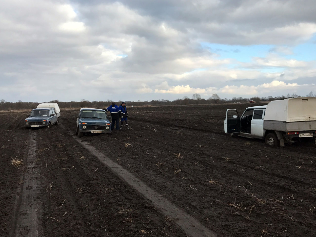 посадка картофеля в АПХ Добронравов АГРО 2017